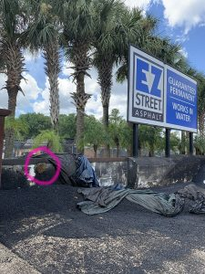 Photo of EZ Street bin with bee hive circled in pink